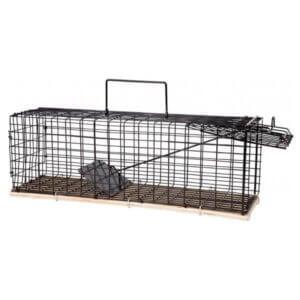 Råttfälla-GreenLine-Metallbur